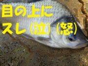 Img_20201027_141959